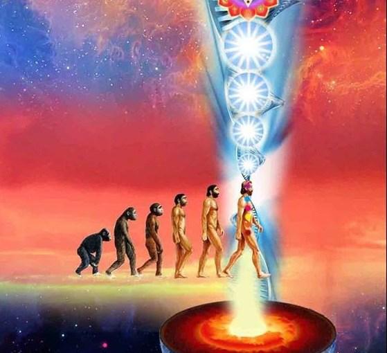 Learn True Alchemy – Visita Interiore Terrae Rectificando Invenies Occultem Lapidem and Earth Connection