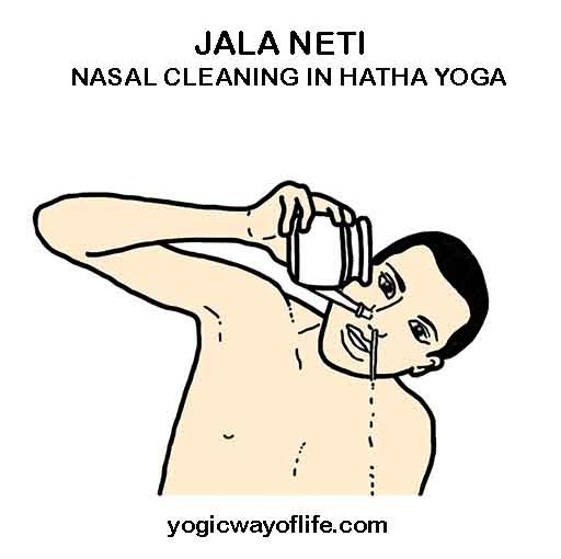 Jala Neti – Hatha Yoga Technique for Cleaning your Sinuses