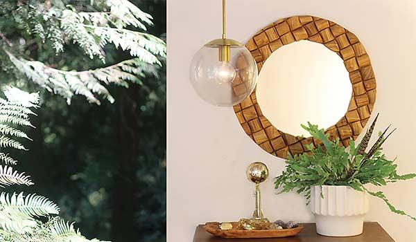 Michelle Steinback's Cedar & Moss