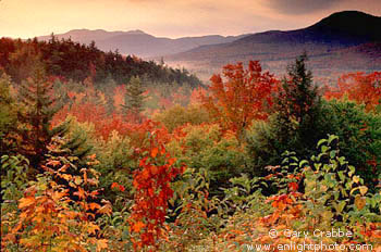 New Hampshire Fall Foliage Wallpaper Fall Colors At Sunrise Below Kancamagus Pass White