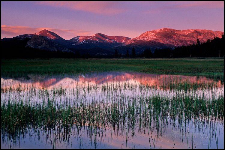 http://enlightphoto.com/photo-info/tiga1094-tuolumne-meadows-mountain-sunset-photo.html