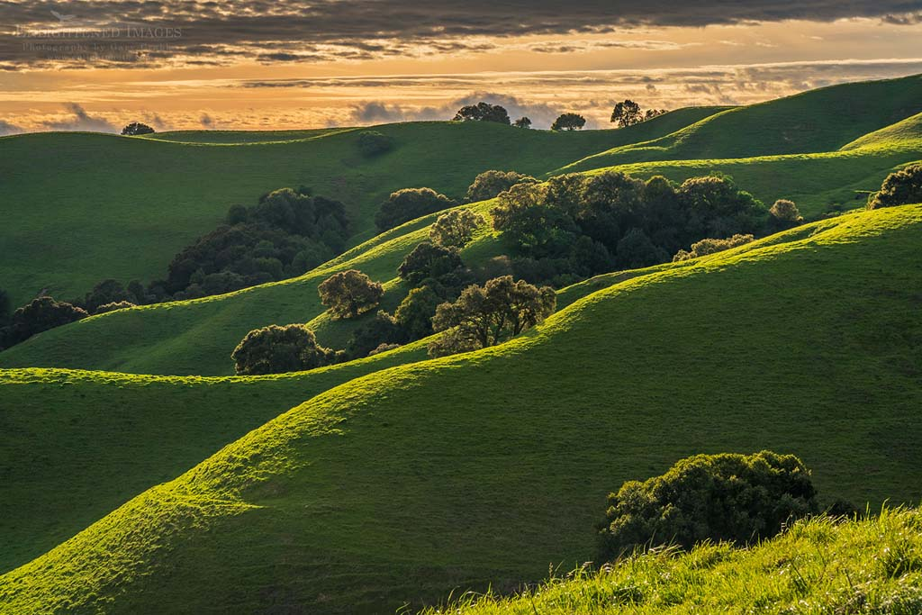 Photo: The rolling green hills of Briones Regional Park, Contra Costa County, California