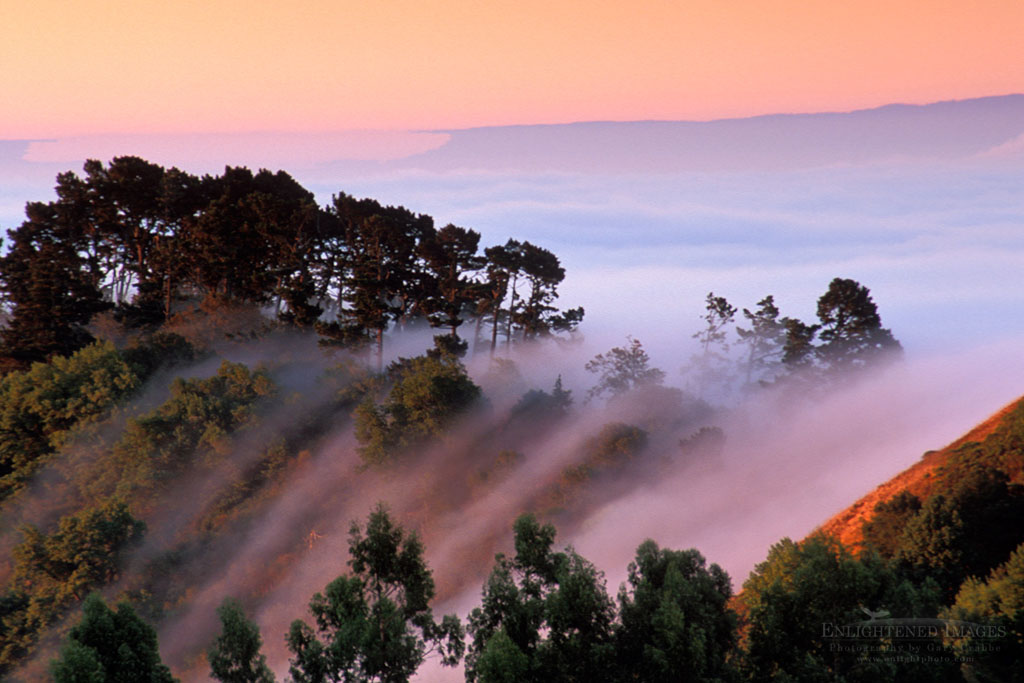Photo: Fog at sunrise rolling in over the Berkeley Hills, Alameda County, California