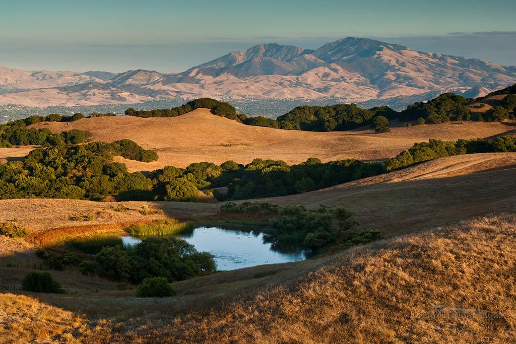 Photo: Mount Diablo seen from Briones Regional Park in summer, Contra Costa County, California