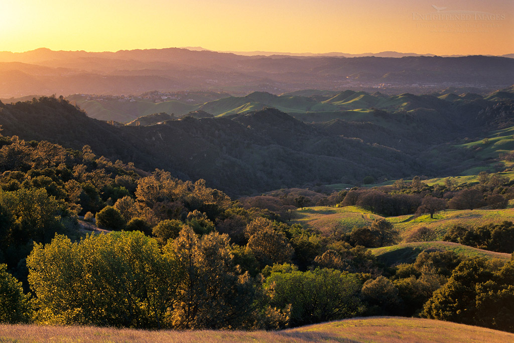 Photo: Sunset light on oak covered hillsides, Mount Diablo State Park, Contra Costa County, California