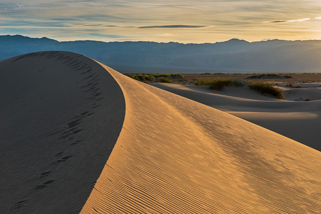 Photo: Sunset light and footsteps in sand on sand dune in the Mesquite Dunes, Death Valley National Park, California