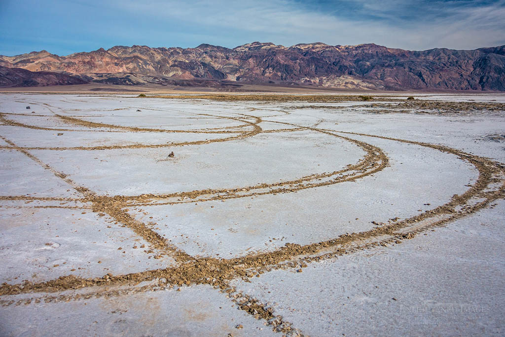 Photo: Vandalism damage on public lands by driving on the fragile crust of the Badwater Playa, Death Valley National Park, California