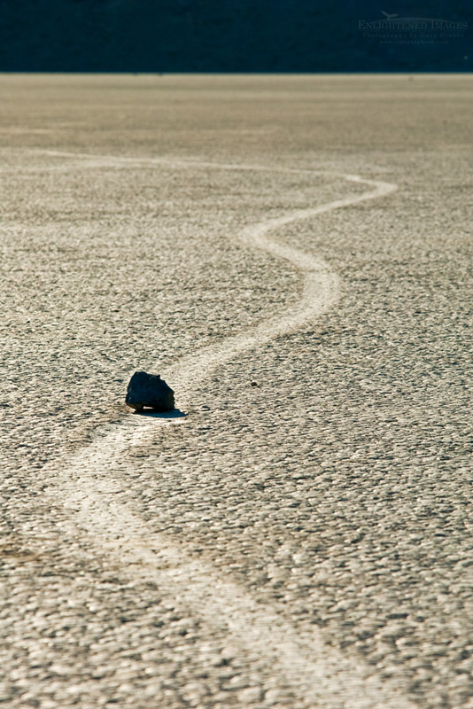 Photo: Tracks left by mysterious moving rocks on the dried flat mud at the Racetrack Playa, Death Valley National Park, California