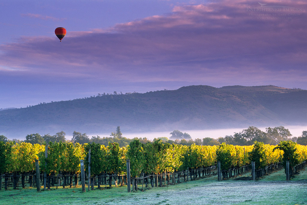 Photo: Hot air balloon and clouds at sunrise over vineyards near Oakville, Napa Valley, Napa County, California