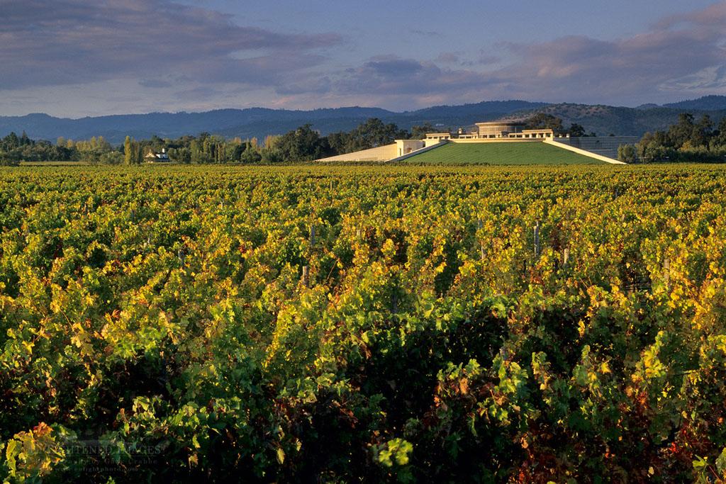 Photo: Sunset light on Opus One Winery, Oakville, Napa County, California