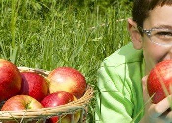 Alimentos sanos para nuestros hijos