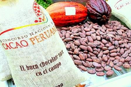 Las exportaciones de cacao en grano representaron un crecimiento del 24% en el primer semestre del año, sostuvo la Gerencia Agroexportadora de ADEX