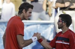 Del Potro y Tipsarevic accedieron a las semifinales de Viena, al vencer fácilmente a sus respectivos rivales