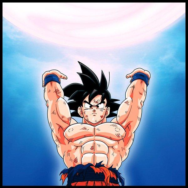 Son Goku /Kakarotto: Es el nieto de Son Gohan, o por lo menos así se nos introduce en la serie animada y el manga. Pero tiempo después se descubre que procede del planeta Vegeta