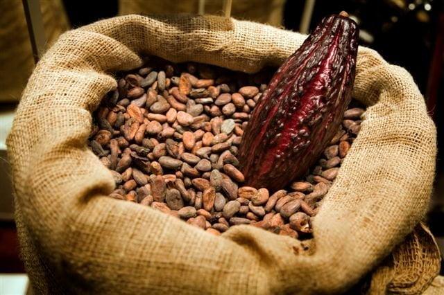 En las próximas semanas el cacao podría ser reconocido como el noveno producto bandera del Perú.