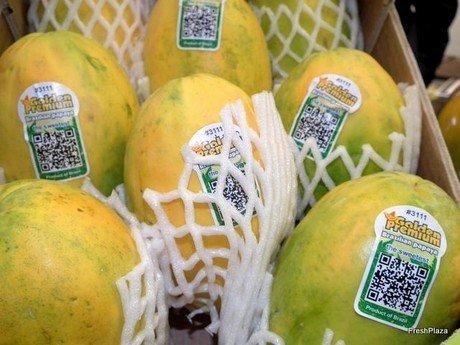 La papaya peruana pronto tendrá la autorización de ingreso al mercado estadounidense.