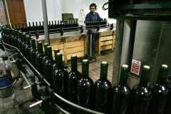 Entre enero y octubre del año pasado, el vino nacional llegó a  siete nuevos mercados.