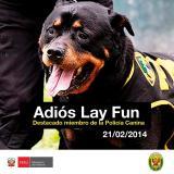 Foto Mininter / Adios a Lay Fun: Perro policía falleció a los 13 años y recibió homenaje