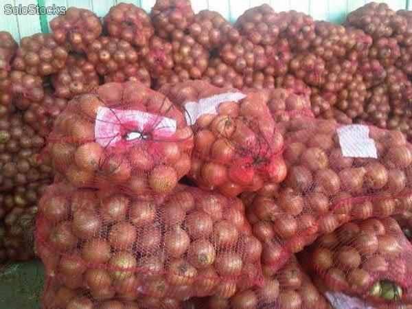 Las salvaguardias impuestas por Colombia a las importaciones de cebolla peruana viene preocupando a los exportadores.