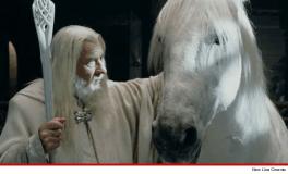 [VIDEO] Shadowfax, el corcel del Señor de los Anillos, fue sacrificado