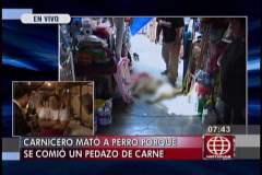 Foto América Noticias / Acusan a carnicero de matar a perro porque se comió su mercadería