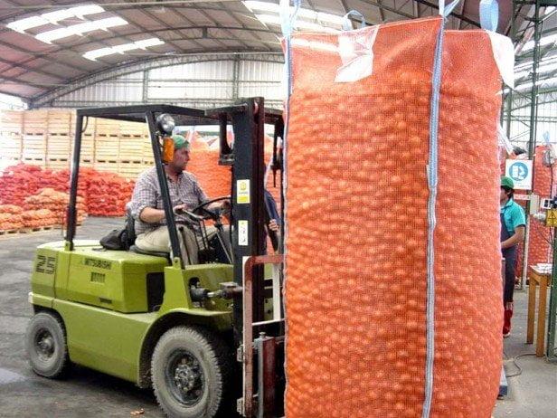 Aunque respetando la cuota establecida, la cebolla peruana entrará sin problemas a Colombia durante dos años.