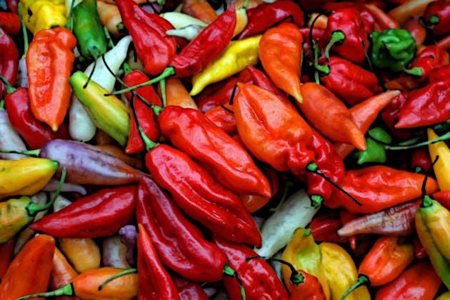 Los empresarios ecuatorianos desean abastecer de ajíes a los restaurantes peruanos que se encuentran principalmente en Quito.