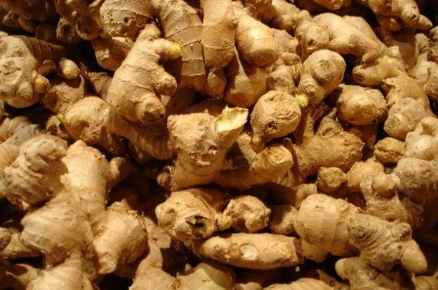 El kión peruano ya ha sido  exhibido en las ferias alemanas Biofach y Fruit Logistica.