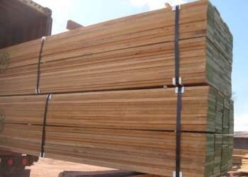 Las maderas, se constituyeron en el principal producto de las exportaciones de la Macro Región Oriente durante el primer trimestre del 2014.