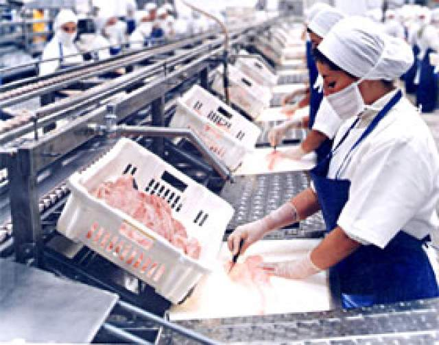Dentro de la Misión Comercial a Portugal, las empresas peruanas visitarán plantas pesqueras.