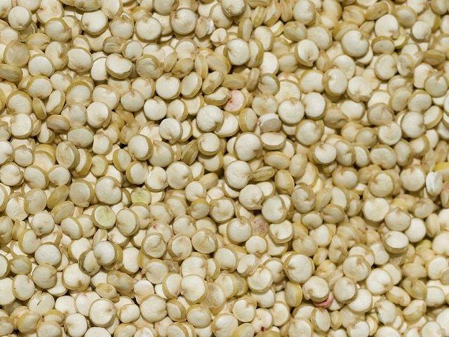 La quinua fue el principal grano andino peruano exportado.