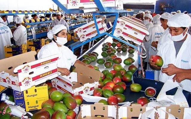 El subsector agropecuario-agroindustrial (productos con valor agregado) mantuvo su dinamismo exportador.
