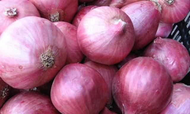 Los empresarios colombianos prefieren la cebolla peruana por su calidad y precio.