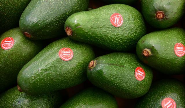 Empresario holandés concretó la compra de productos agroperuanos.