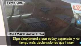 """Mario Vargas Llosa: """"Les confirmo que estoy separado"""" [VIDEO]"""
