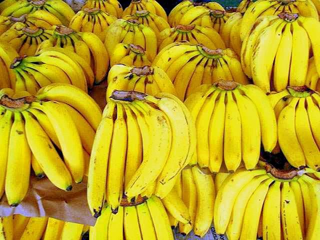 Los envíos de plátano al exterior generaron un importante incremento en su facturación.