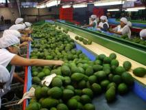 Las exportaciones peruanas con valor agregado se direccionaron principalmente al mercado estadounidense.