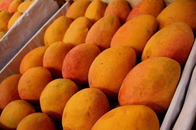 Coreanos ya saborean el mango peruano.