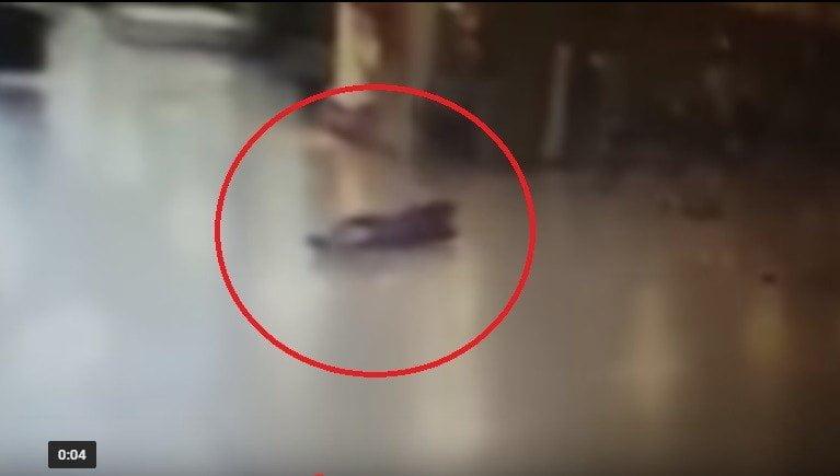 YouTube: atacante suicida detonó explosivo pese a disparos