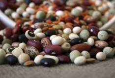 Los frijoles secos lideraron el ranking exportador de legumbres peruanas.