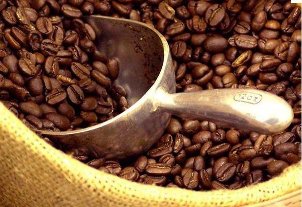 Asociaciones y cooperativas peruanas mostraron oferta exportable de café especial en Holanda.