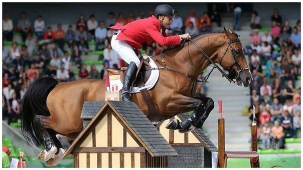 Alonso Valdez hizo historia en Río al ser el primer jinete peruano en competir en unas olimpiadas.
