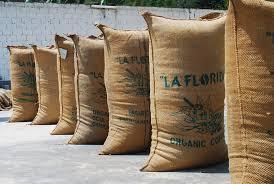 El café peruano continúa diversificando mercados,