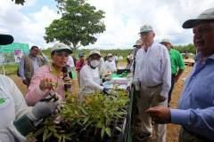Bosques de la Sierra y la Amazonía serán reforestados anunció el presidente Kuczynski.