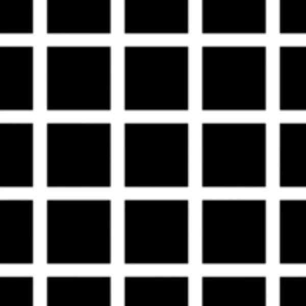 5-¿Observas puntos grises en las intersecciones de las líneas blancas?
