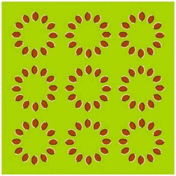 3-¿Están los círculos estáticos o en movimiento?