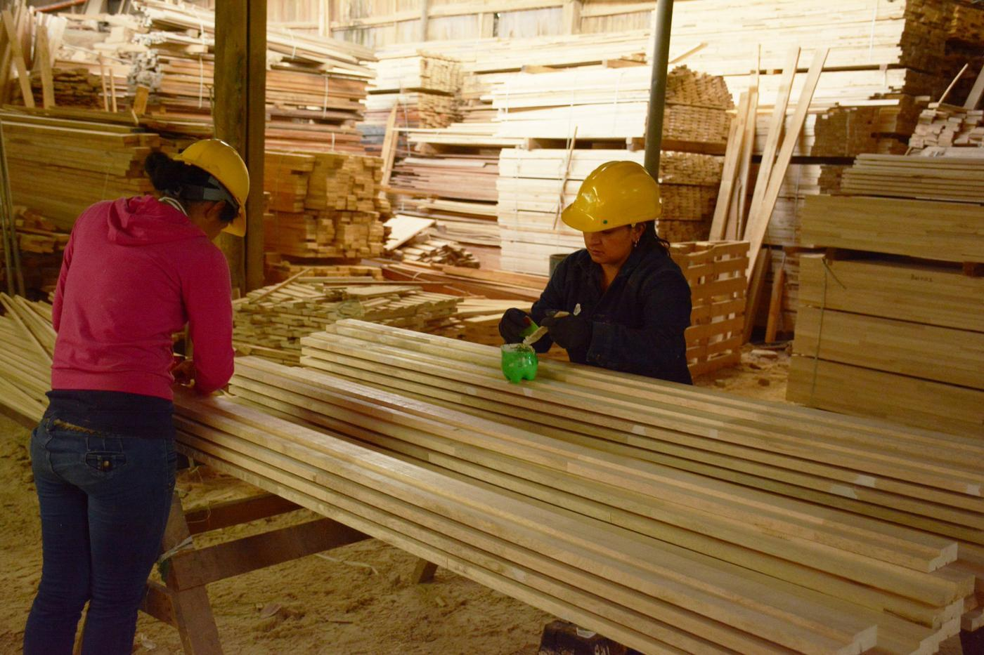 Monto de exportaciones de madera para la construcción registraron superávit entre enero y abril