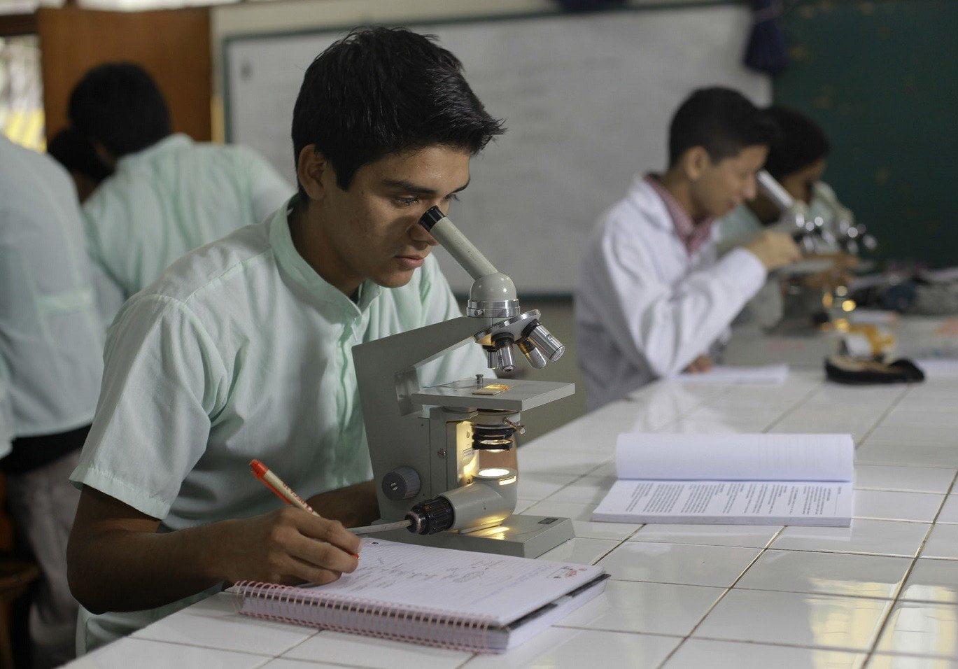 Becas para universitarios de economía, ingeniería, biología y otras carreras