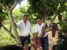 El origen del cacao estaría en la Amazonía peruana
