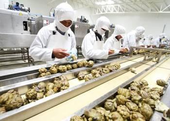 Mincetur: 8 mil empresas serán exportadoras peruanas en 2018